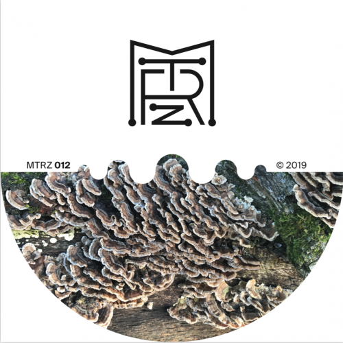 Ion Ludwig - A better future to long EP // MTRZ012